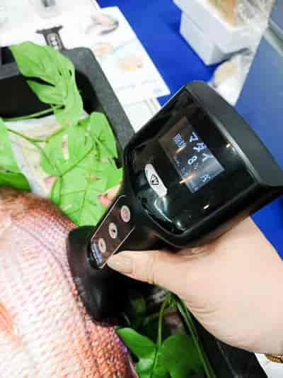 Yamato Scale Fish Analyzer Fish Market 3